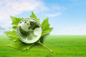 grøn miljø